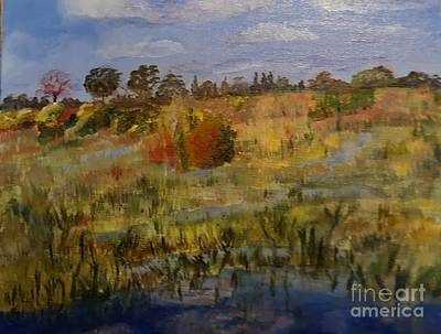 Painting - Marsh Trail At Loxahatchee by Donna Walsh