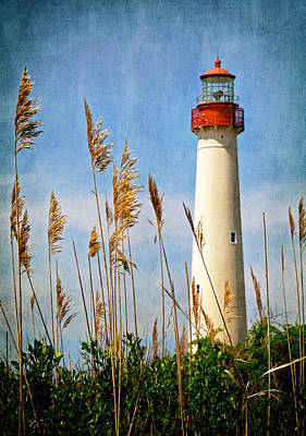 Photograph - Marsh View Of Cape May Lighthouse by Carolyn Derstine