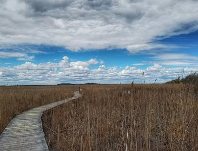 Photograph - Marsh Walk 3 by Mary Capriole