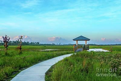 Photograph - Marsh Walkway by Tom Claud