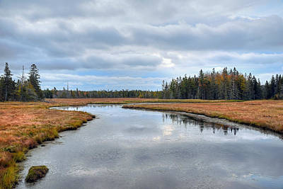 Photograph - Marshall Brook - Acadia - Maine by Geoffrey Coelho