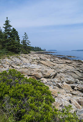 Photograph - Marshall Ledge Looking Downeast by Patrick Fennell
