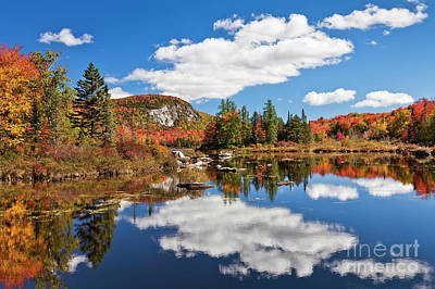 Photograph - Marshfield Pond Autumn by Alan L Graham