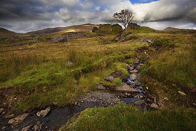 Photograph - Marshland At Rhyd Ddu, Wales by Richard Wiggins