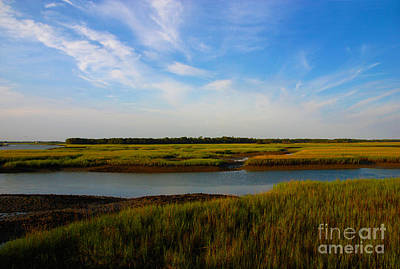 Marshland Charleston South Carolina Art Print