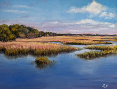 Marshland In Florida Art Print