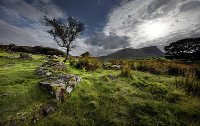 Photograph - Marshland On Route To Snowdon Mountaintop by Richard Wiggins