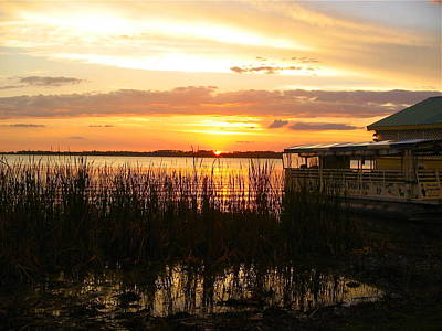 Photograph - Marshland Sunset by Denise Mazzocco