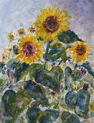 Martha's Sunflowers Art Print