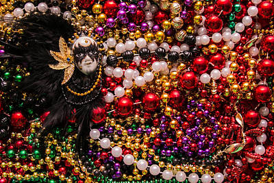 Wall Art - Photograph - Mardi Gras In Red Mask Left by Diana Marcoux