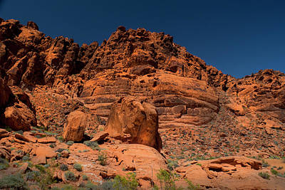 Photograph - Martian Landscape Valley Of Fire by Frank Wilson