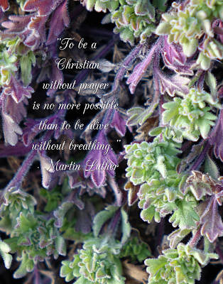 Photograph - Martin Luther Quote On Prayer by Denise Beverly