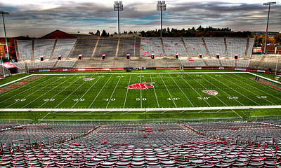 Photograph - Martin Stadium The Home Of Cougar Football by David Patterson