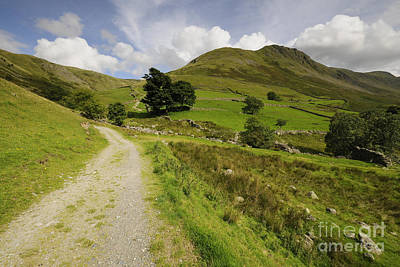 Lake Photograph - Martindale Common by Nichola Denny