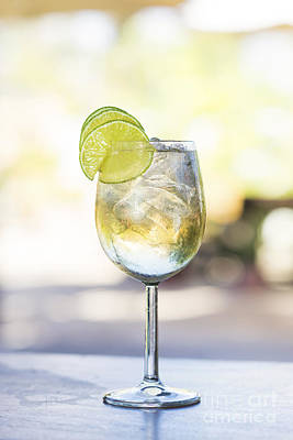 Martini Royalty-Free and Rights-Managed Images - Martini Bianco Vermouth Spritzer With Lime by Jacek Malipan