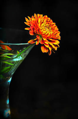 Photograph - Martini Mum by Diana Angstadt