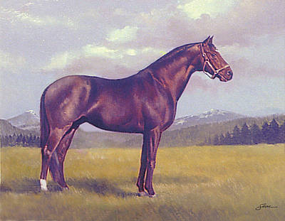 Race Horse Painting - Maryland Race Horse by Harold Shull