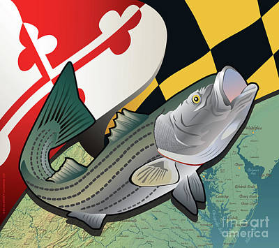 Digital Art - Maryland Rockfish by Joe Barsin