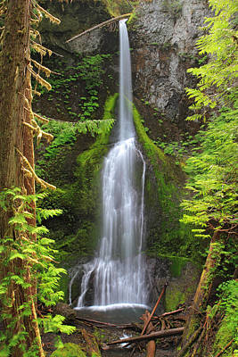 Photograph - Marymere Falls In Olympic National Park by Pierre Leclerc Photography