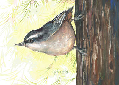 Painting - Ma's Morning Nuthatch by Sheri Jo Posselt
