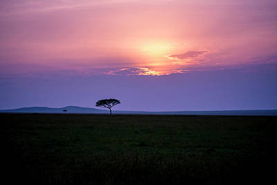 Photograph - Masai Mara Sunset by David Morefield