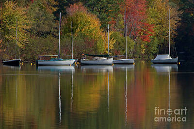 Photograph - Mascoma Reflection by Butch Lombardi