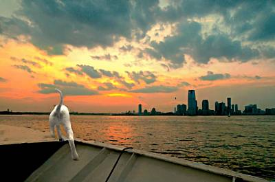 Photograph - Ahoy Mate by Diana Angstadt