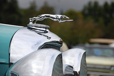 Photograph - Mascot Hood Ornament by John Schneider