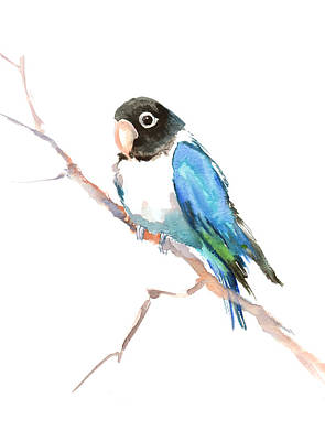 Lovebird Painting - Masked Lovebird by Suren Nersisyan
