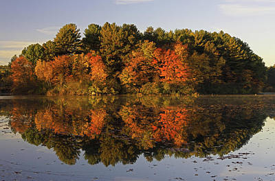 Photograph - Massachusetts Autumn Solitude by Juergen Roth