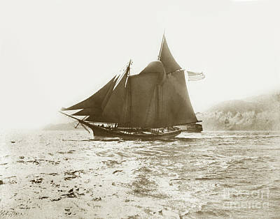 Photograph - Master Mariners Regatta San Francisco Bay Sail Boats Race  July 4, 1884 by California Views Archives Mr Pat Hathaway Archives