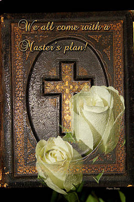 Photograph - Master's Plan by Phyllis Denton