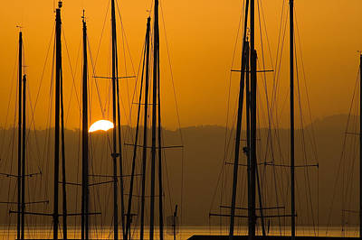 Photograph - Masts At Dawn by Mick Burkey