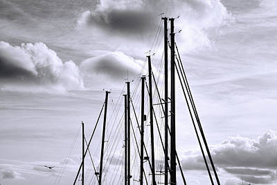 Photograph - Masts by Ed Waldrop