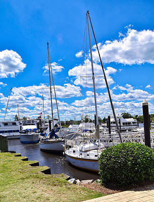 Photograph - Masts by Linda Brown