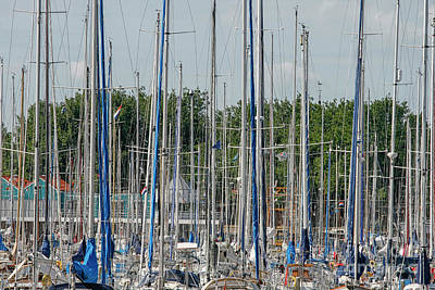 Photograph - Masts by Patricia Hofmeester