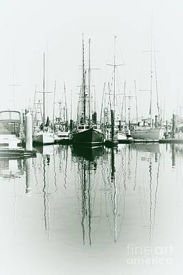 Photograph - Masts by Sheila Ping