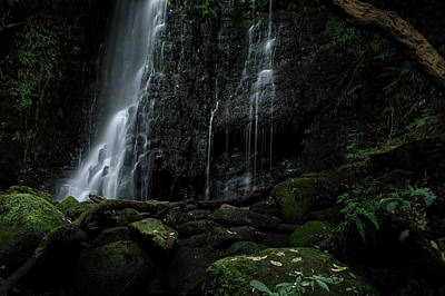 Photograph - Matai Falls by Brad Grove