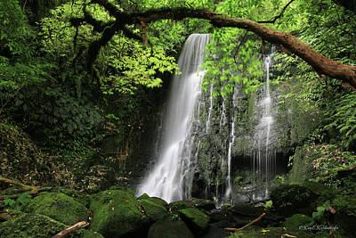 Photograph - Matai Falls In New Zealand by Kay Kochenderfer