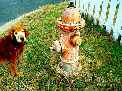 Matching Dog And Fire Hydrant Original