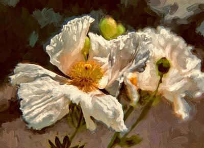 Matilija Poppies Art Print by John K Woodruff