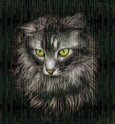 Photograph - Matrix Cat by Matthias Hauser