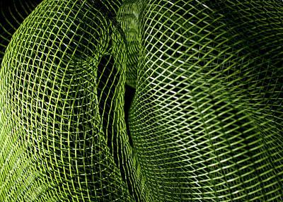 Photograph - Matrix by Robert Och