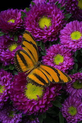 Matsumoto With Butterfly Art Print by Garry Gay