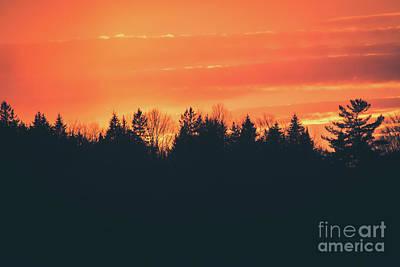 Photograph - Matte Silhouette Sunset by Cheryl Baxter