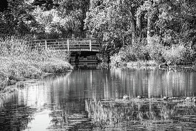 Matthaei Botanical Gardens Black And White Art Print by Pat Cook
