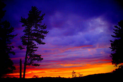 Photograph - Maudslay Sunset 2 by Suzanne DeGeorge