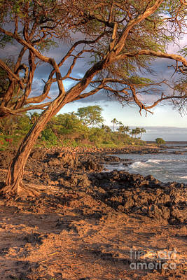 Photograph - Maui Beach by Bryan Keil
