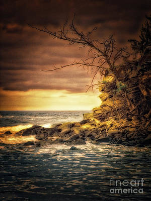 Photograph - Maui Ocean Point by Chuck Caramella