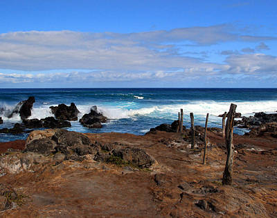 Photograph - Maui Seascape by John Bushnell